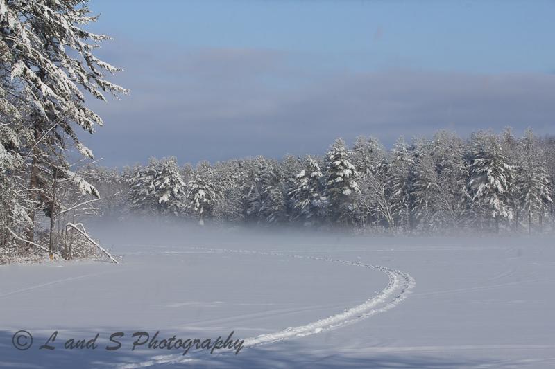 feb25-greenfield-3813