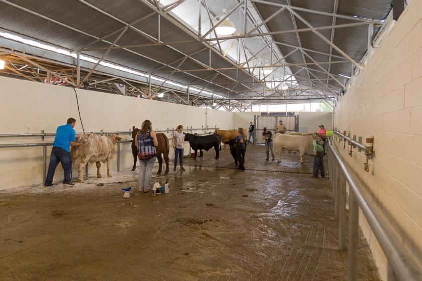 Texas State Fair-2859