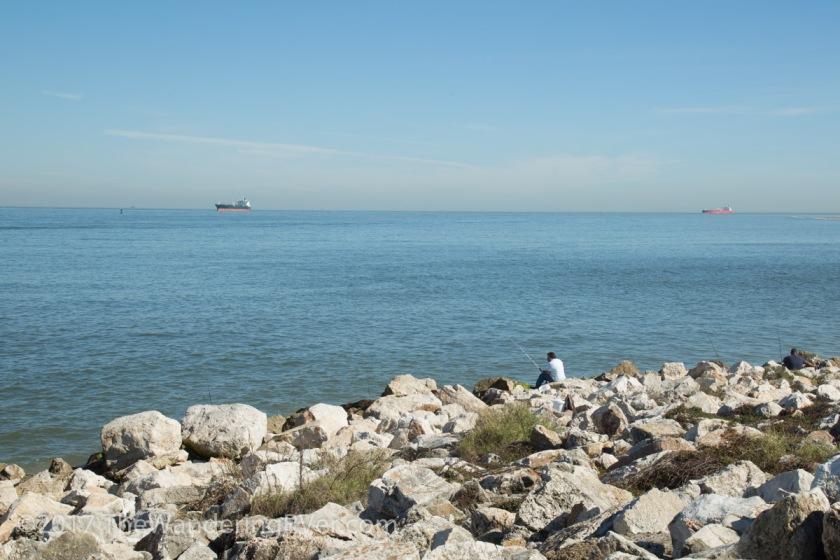 Galveston-4127