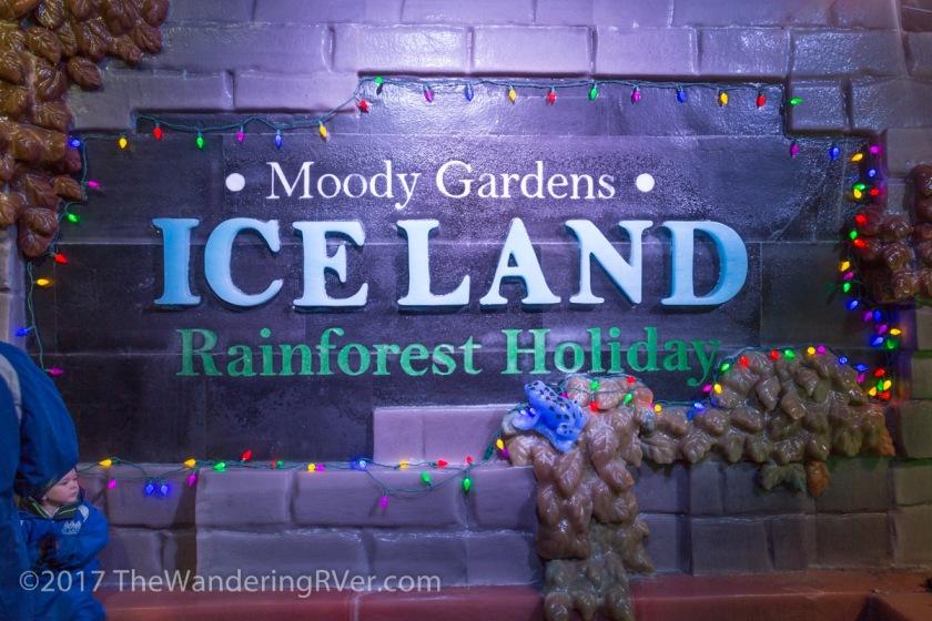 Moody Gardens-4209