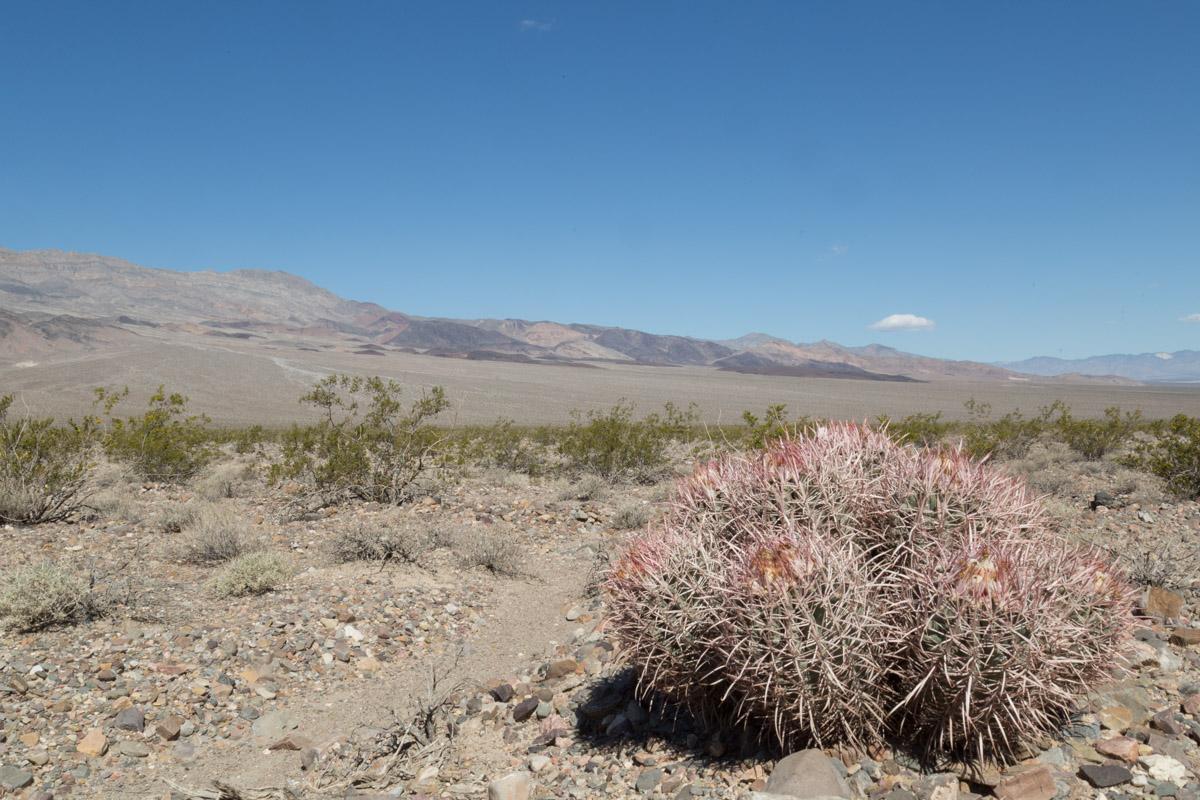 Death Valley-6489