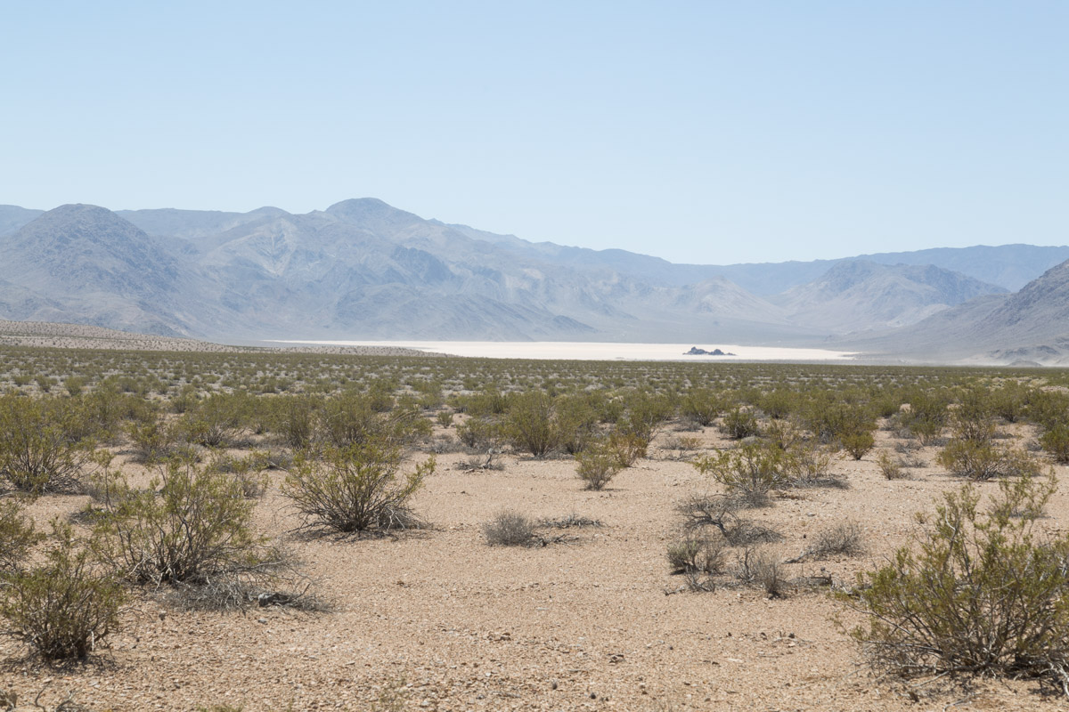Death Valley-6523