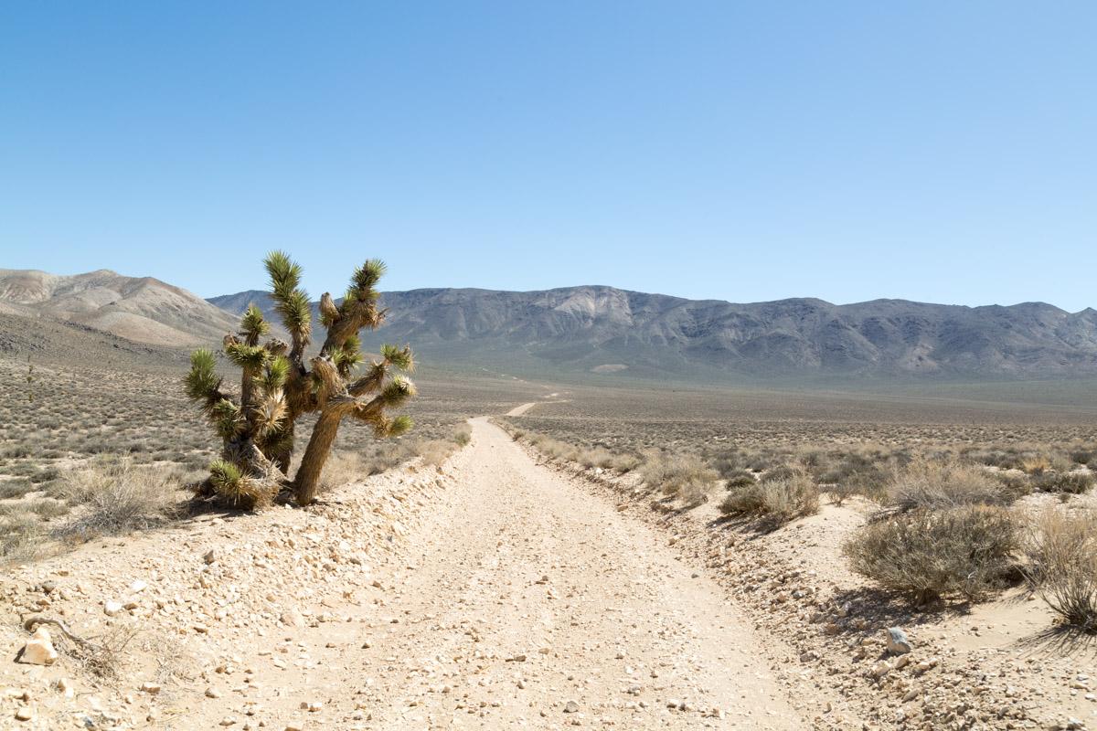 Death Valley-6555