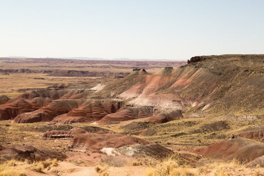Petrified Forest NP-6141