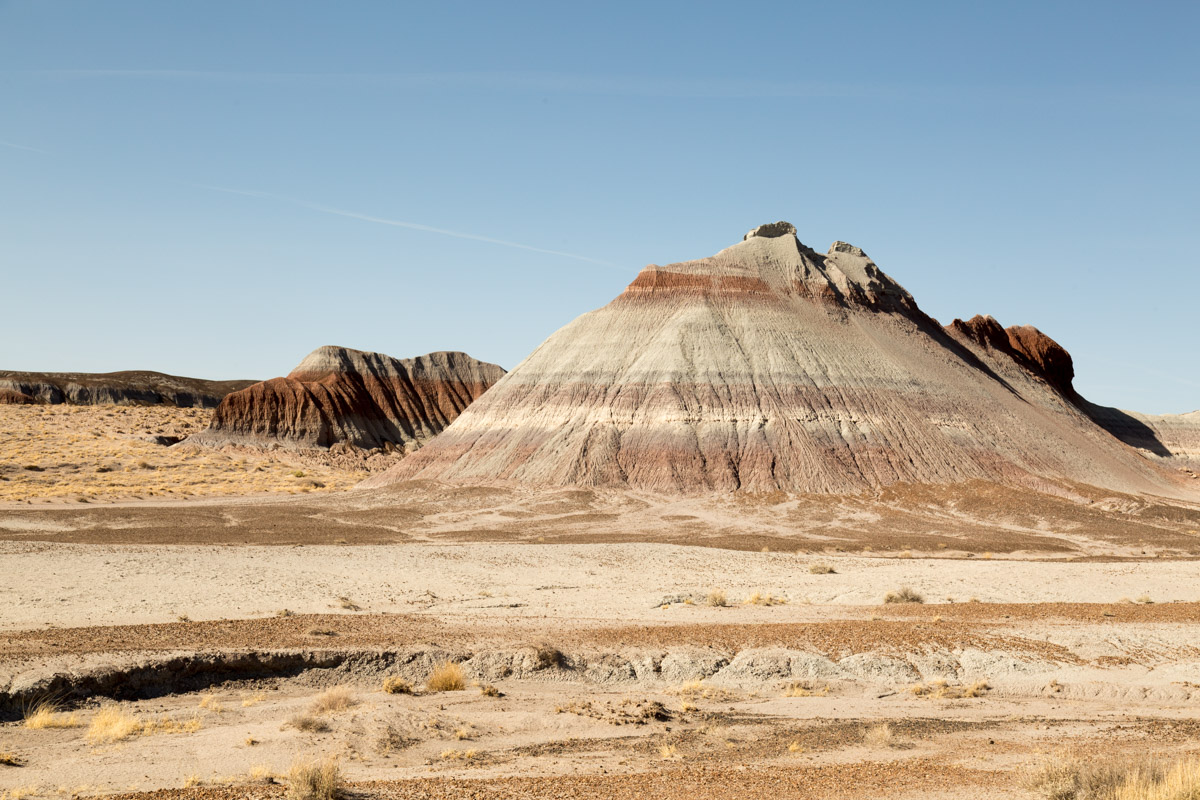 Petrified Forest NP-6150