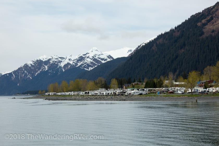 Kenai Fjords Glacier Cruise-7425