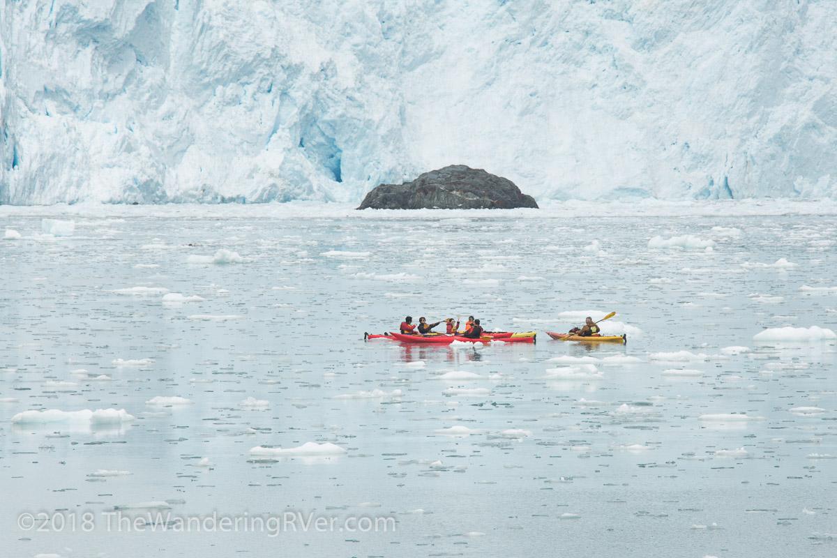 Kenai Fjords Glacier Cruise-7695