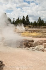 Yellowstone NP-0082