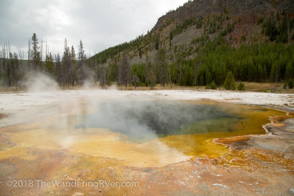 Yellowstone NP-0235